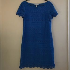 Blue Lace Knee-length Shift Dress